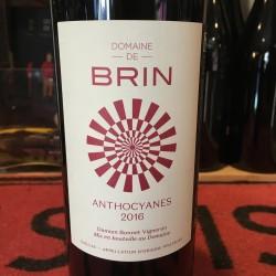 Domaine de Brin - Anthocyanes
