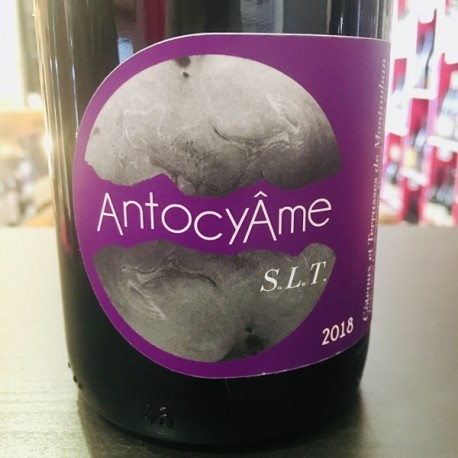 Domaine AntocyAme - S.L.T.