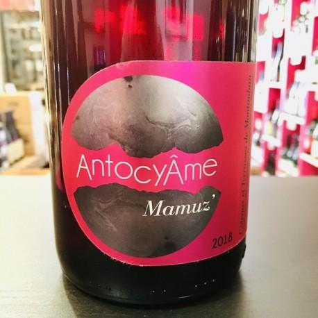 Domaine AntocyAme - Mamuz'
