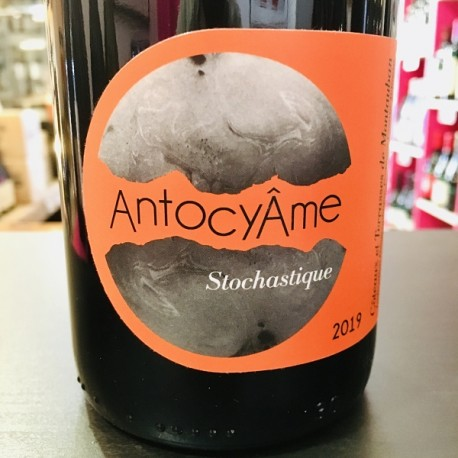 Domaine AntocyAme - Stochastique