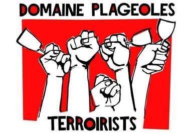 Acheter vins Domaine Plageoles | A.O.C. Gaillac